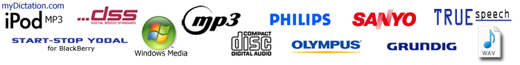 SST 12 supports most popular and obscure audio formats